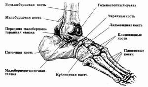 Synovitis Ankle Behandlung